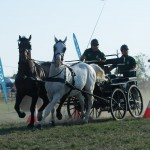 DI_hortobagyi_lovasnapok-14